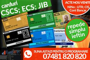 Carduri CSCS; ECS; JIB